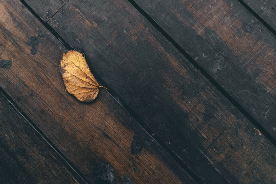 An autumn leaf sits on heavily weathered wooden deck boards